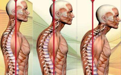 Waarom is lichaamshouding belangrijk?